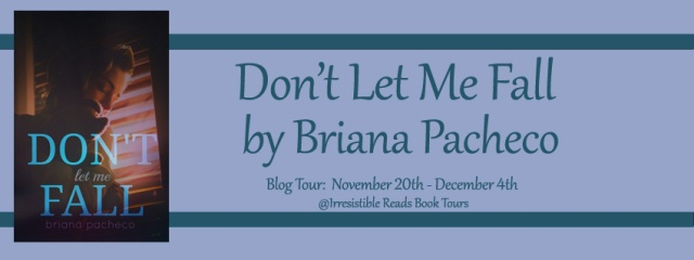 Banner - Don't Let Me Fall by Briana Pacheco 1