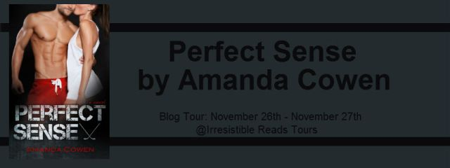 Banner - Perfect Sense by Amanda Cowen
